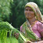 La faim dans le monde progresse de nouveau, mue par les conflits et le changement climatique, selon le dernier rapport des Nations Unies