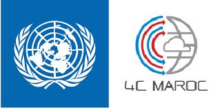 Conception et développement d'un système MRV en ligne intégré de la NDC du Maroc